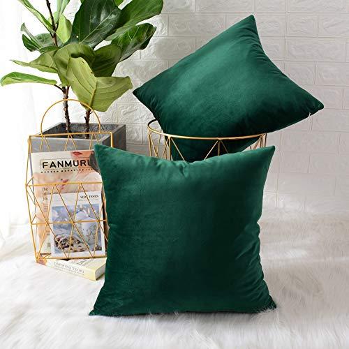 Mernette confezione da 2, velluto morbido decorativo quadrato copricuscini e federe tiro cuscino copri decorazioni per la casa per divano letto sedia 20x20 pollici/ 50x50 cm