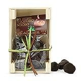 Fichi Secchi Cosentini Bio Ricoperti di Cioccolato