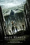 THE MAZE RUNNER – US Imported Movie Wall Poster Print – 30CM X 43CM Brand New