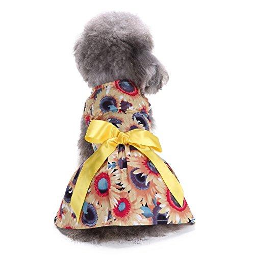 L-Peach Haustiere Kleidung Klein Mädchen Hund Kleidung Welpen Rock Katze Haustier Kleid Rock Kleine Hunde Welpen Prinzessin Kleid für Frühling Sommer Gelb (Prinzessin Halloween Peach Kostüme)