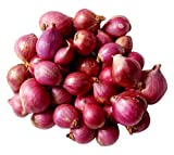 #6: Fresh Produce Onion - Sambar, 500g