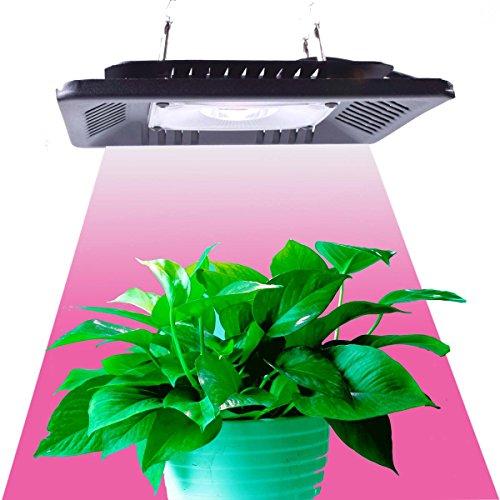 Foto de Lámpara de Plantas XHGrow 100W COB LED Grow Light Full Spectrum Lampara Led Cultivo para Plantas y Floracion Crecimiento Armario Cultivo Interior