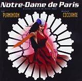 Notre Dame de Paris -
