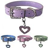 Lushpetz Hundehalsband aus Leder mit gratis Herzanhänger in den Größen XS, Small, Medium und Large (Mittel, Lila)