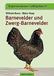 Barnevelder und Zwerg-Barnevelder (Expertenwissen Geflügelzucht)