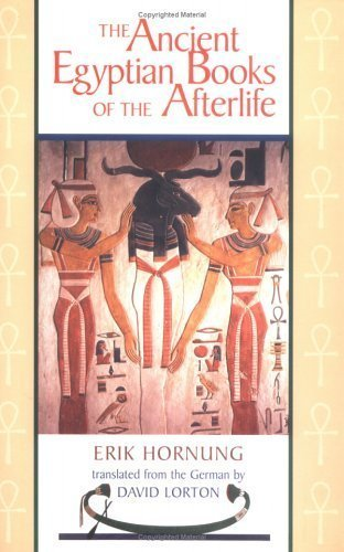 The Ancient Egyptian Books of the Afterlife by Erik Hornung (1999-06-01)