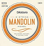 D 'Addario Mandolinen-Saiten, ejm74)
