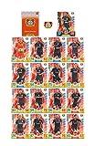 Match Attax Bundesliga 2017 2018 - Bayer 04 Leverkusen Mannschafts-Set 18 Karten Basiskarten Clubkarte Starspieler - Deutsche Ausgabe
