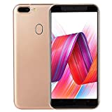 Oasics R15 ,Smartphone Neue Art und Weise 5,0 Zoll Doppel-HDCamera Smartphone Android 6.0 IPS-Full Screen GSM/WCDMA-Touch Screen WiFi Bluetooth GPS 3G Anruf-Handy (Gold)