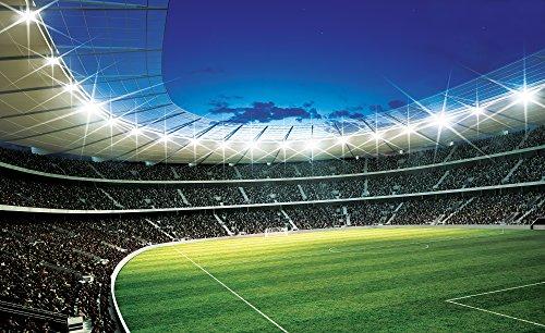 disney-licence-323p8-stade-football-sport-papier-peint-dcoration-murale-multicolore-3680-x-2540-cm