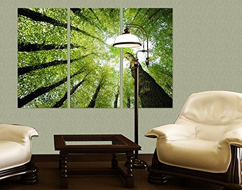 Apalis Lienzo árboles de la vida tríptico I, lienzo de cuadros en lienzo, lienzo, lienzo, impresión, lienzo, pared arte