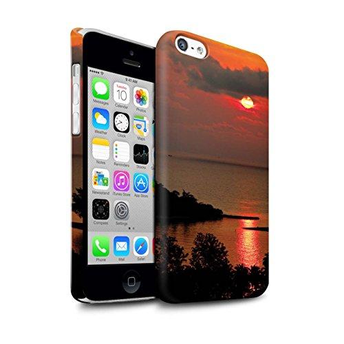 STUFF4 Matte Snap-On Hülle / Case für Apple iPhone 5C / Tropische Bäume Muster / Sonnenuntergang Kollektion Rote Sonne
