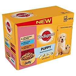 Pedigree Puppy Wet Food with Meat Selection in Jelly, 12 x 100g