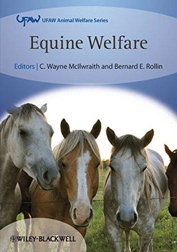 Equine Welfare (UFAW Animal Welfare)