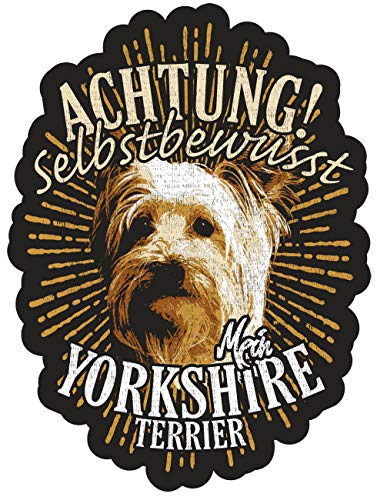 Aufkleber Yorkshire Terrier 13 cm oder 40 cm wetterfest aussenbereich Auto Hund