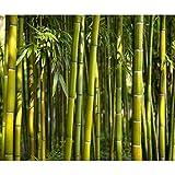 decomonkey Fototapete selbstklebend Bambus Natur 343x256 cm XXL Selbstklebende Tapeten Wand Fototapeten Tapete Wandtapete klebend Klebefolie Wald