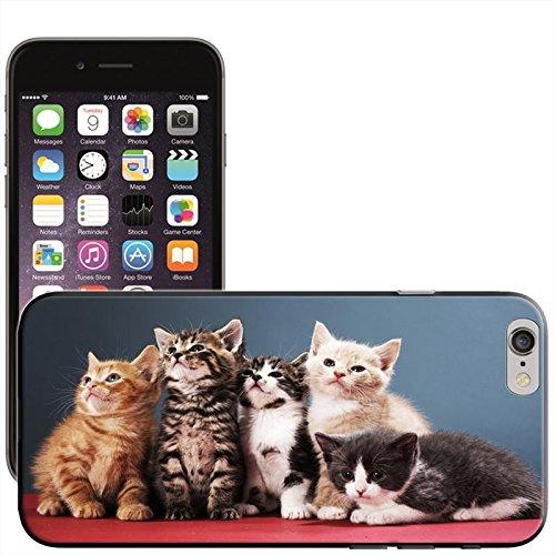 Fancy A Snuggle 'Süßer schwarz Katze bereit für Weihnachten Wearing Santa Hat' Hard Case Clip On Back Cover für Apple iPhone 5C Cute Kittens Looking Up