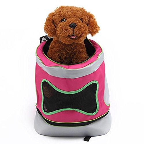Rucksack, Tasche tragbare Haustier Katze Taschen Rucksäcke, s (Einfach Nicht Von Dieser Welt Kostüm)