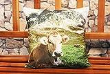 Kamaca Softweiche Kissenhülle Kissenbezug mit wundervollem Motiv moderner Fotoprint aus Kurzplüsch weich und anschmiegsam EIN Eyecatcher (Kuh)