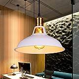Beakjiful Lampada a sospensione Moderna Industriale Vintage Luce pendente camera da letto/cucina Coperchio pentola ferro da stiro singola testa, bianco