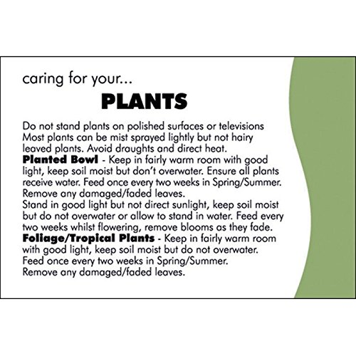 100-oasis-florist-plant-care-cards-4157