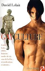 Gayculture : Codes, looks, idoles, humour, modes de vie, sens de la fête, revendications et attentes