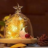 Lichterkette Außen, HUIHUI Wasserdicht 2M 20 Mini LEDs Kupferdraht Lichterkette batteriebetrieben für Party, Garten, Weihnachten, Halloween, Hochzeit, Indoor & Outdoor Decor (Beige,One size)