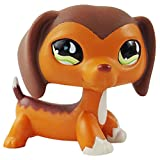 dreamsLE_Pet toy store Pet Shop Teckel Savvy Savvanah Reed LPS Chien Figure Jouet # 675 (Brown)