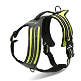 Best Front Range No-pull Dog Harnesses - TOPSOSO Fashion Shop Front Range No-Pull Dog Harness Review