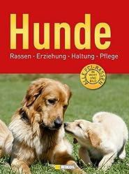 Hunde: Rassen, Erziehung, Haltung, Pflege