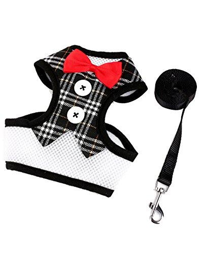 ZiXing Samt Tuxedo Gentleman Suit Hundegeschirr Weste mit Griff für kleine mittelgroße Hunde, Mops, Jack Russell, Terrier, Pudel, Welpen Gold L (Tuxedo Gold)