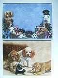 Doppelkarte mit Umschlag, Hunde mit Stinktier, 19004, Bild, Hund, Karte, Karten