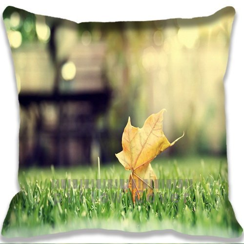Cool Design Pillow case/Copricuscini e federe Artist