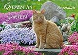 Katzen im Garten Posterbuch (Posterbuch DIN A4 quer): Katzen fotografiert zwischen farbenfrohen Blumen und ländlicher Idylle, ein Posterbuch. ... [Taschenbuch] [Mar 04, 2013] Menden, Katho