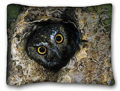 Custom (Animals Birds Budgie Love) Pillow Covers Bedding Accessories size 50,8 x 66 cm Suitable for full-bed, Flanella, Pattern 10, European