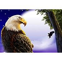 Fliegender Adler 30,5 x 40,6 cm MXJSUA DIY 5D Diamant Malen nach Zahlen Kits Full Drill Strass Stickerei Kreuzstich Bilder Kunst Handwerk f/ür Zuhause Wanddekoration