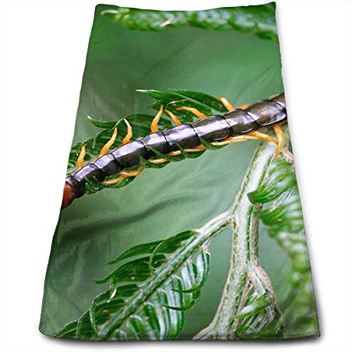 ERCGY Centipede On The Leaves Kitchen Towels - Dish Cloth - Machine Washable Cotton Kitchen Dishcloths, Dish Towel & Tea Towels for Drying,Cleaning,Cooking,Baking (12