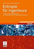 Entropie für Ingenieure: Erfolgreich das Entropie-Konzept bei Energietechnischen Fragestellungen Anwenden (German Edition)