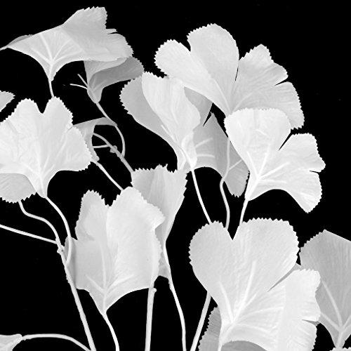 künstlichGinkgo Blatt für Zuhause Hochzeit Garten Dekoration 12 Stück Weiß
