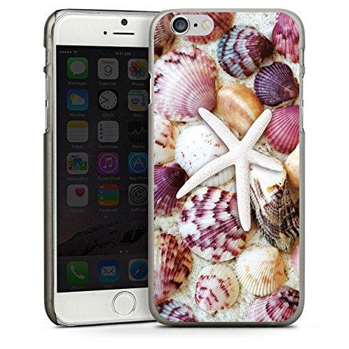 Apple iPhone 5 Housse étui coque protection Coquillages Moules Étoile de mer Plage CasDur anthracite clair