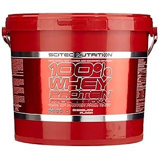 Scitec Nutrition Whey Protein Professional Schokolade, 1er Pack (1 x 5 kg)