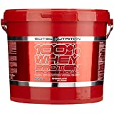 Scitec Nutrition Whey Protein Professional Schokolade, 1er Pack (1 x 5 kg)