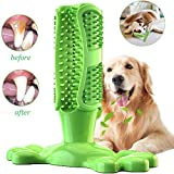 JIAYOYO Chewing Dog Toy, Dog Toothbrush Tooth Cleaner Puppy Tooth Care Brush, Bar Natural Rubber Pet Oral Care Toothbrush Pet Toothbrush