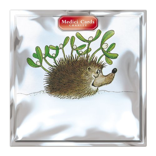 medici-charity-christmas-cards-pack-of-8-cards-mistletoe-hedgehog-in-aid-of-the-following-charities-