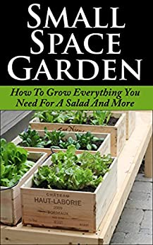 Small Space Garden: How To Grow Everything You Need For A Salad And More (Small Space Garden, Small Space Gardening, Small Space Garden Ideas, Square Foot ... Square Foot Gard) (English Edition) von [Boyd, Alexis]