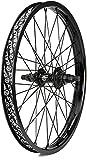 Salt Rookie BMX Kassetten-Hinterrad (20