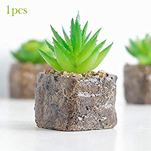 Sel-More 1pcs de Mini Plantas suculentas Artificiales Decorativas de Cactus Cactiferas – Plantas Artificiales en Maceta…