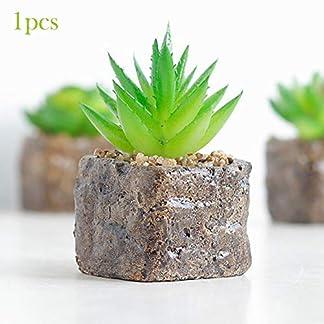 Sel-More 12 Estilos de Mini Plantas suculentas Artificiales Decorativas de Cactus Cactiferas – Plantas Artificiales en Maceta, 1 Paquete (al Azar)