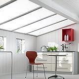 Swing Line Wandpaneel und Deckenpaneel Birke Weiß 2200 x 168 x 10 mm