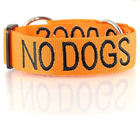 """""""NO DOGS Orange Coded Nylon Wide Large L-XL Semi-Choke Dog Collar (Not Good With Other Dogs) PREVENTS Accidents by Warning Others of Your Dog in Advance!"""